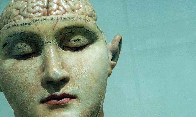 Des étudiants d'école d'art atteints d'Alzheimer !
